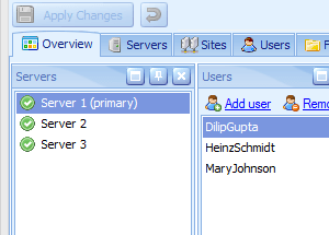 The Overview panel allows the administrator to combine a series of views within the one panel.
